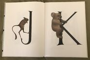 Animal Alphabet (Bert Kitchen) (6)