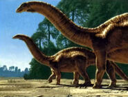 Apatosaurus-from-swamp-to-tree-tops-encyclopedia-3dda