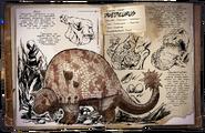 Doedicurus Dossier
