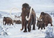 Ice Age Mammoths and Mastodons
