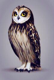 Otulissa the owl