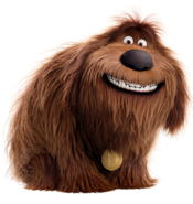 Duke the secret life of pets