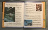 Scholastic Encyclopedia Of Animals (51)