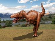 Dm daspletosaurus