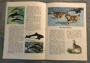 A Golden Exploring Earth Book of Animals (11)