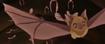 Cave Bat TLG