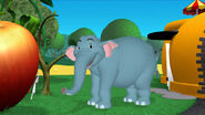 MMCH Elephant