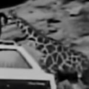 AMC Wagons Giraffe