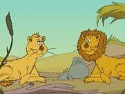 Leo and Leona Lions