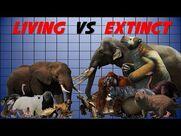 Living Elephant vs Extinct Elephant