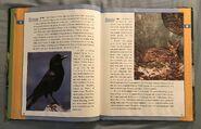 Scholastic Encyclopedia Of Animals (14)
