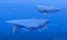 Aegirocassis benmoulae by christopher252-d9kpol5