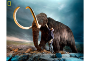 How the Woolly Mammoths Were Wiped Out