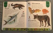 Deadly Creatures Dictionary (26)