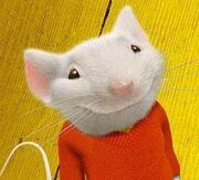 Stuart Mouse