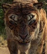 Shere Khan in Mowgli- Legend of the Jungle