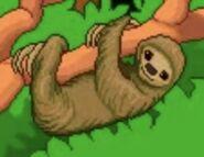 BTKB Sloth
