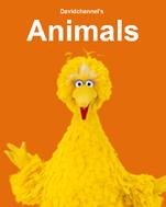 Animals (Storks)
