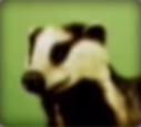 Badger-disneythinkfast