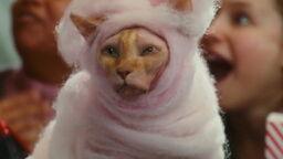 Cats-dogs-revenge-movie-screencaps.com-8643