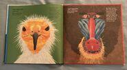 Creature Features (2)