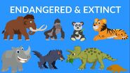 Extinct vs Endangered