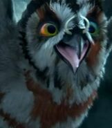 Jutt in Legend of the Guardians The Owls of Ga'Hoole