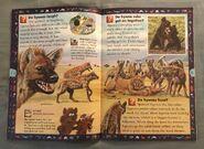 Wild Cats and Other Dangerous Predators (8)