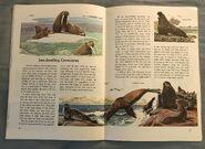 A Golden Exploring Earth Book of Animals (15)