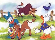 Calf-in-baby-animals-from-disney-discovery-series