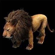 Lion aoe2DE