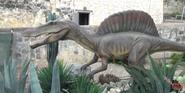 San Antonio Zoo Spinosaurus