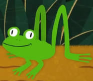 Frog walking in the jungle super simple songs