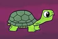 TTG Land Turtle