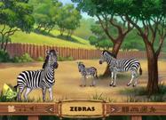 ABC Mouse Zebras