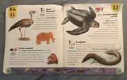 Extreme Animals Dictionary (14)