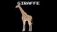 KPS Giraffe