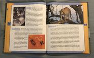 Scholastic Encyclopedia Of Animals (28)