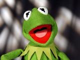 Kermit Pan