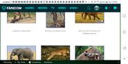 Walking With Serengeti Animals1
