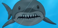 Family Guy Shark