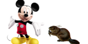 Mickey Mouse Beaver