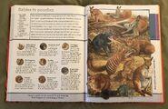 Fantastic World of Animals (79)