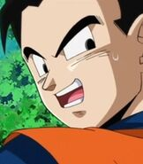 Gohan-son-dream-9-toriko-and-one-piece-and-dragon-ball-z-super-collaboration-special-84.2