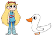 Star meets Domestic Duck