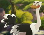 Ostrich TLG