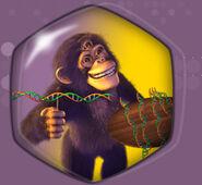 Samp monkey