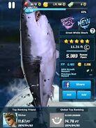 Ace fishing white shark