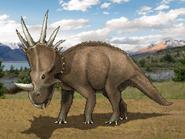 Dm styracosaurus