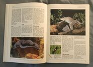 The Kingfisher Illustrated Encyclopedia of Animals (36)